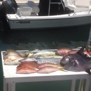 Mixed bag while bottom fishing